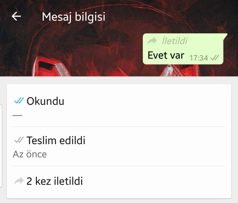 WHATSAPP'A İKİ YENİ ÖZELLİK GELDİ..
