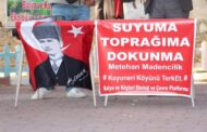 Çiğdem Çimen-BALYA KADERİNE TERK EDİLEMEZ!..