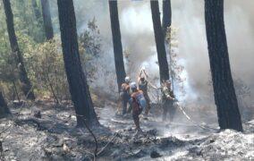 Aliağa Belediyesi Ekipleri Marmaris Yangın Bölgesinde Görev Aldı...